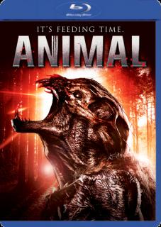 Animal (2014) DVDRip Latino