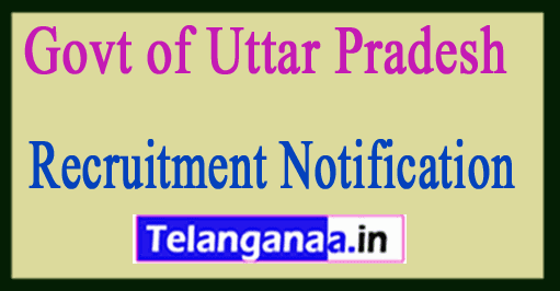 Govt of Uttar Pradesh Recruitment Notification