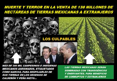 MUERTE Y TERROR EN MÉXICO