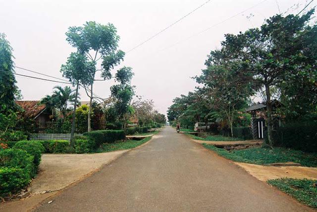 Con đường của buôn rất sạch sẽ, khang trang, phía trước cổng mỗi nhà là khu vườn với nhiều cây xanh