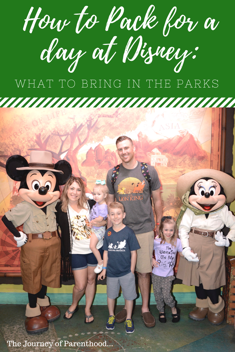 How to Pack for a day at Disney: What to Bring in the Parks