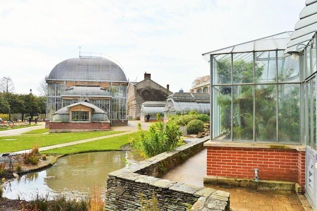 L 39 atelier du 23 un petit tour au jardin des plantes de nantes for Jardin des plantes nantes de nuit