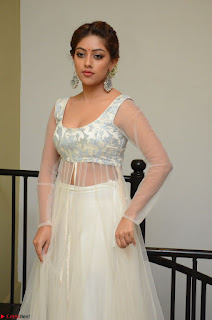 Anu Emmanuel in a Transparent White Choli Cream Ghagra Stunning Pics 130.JPG