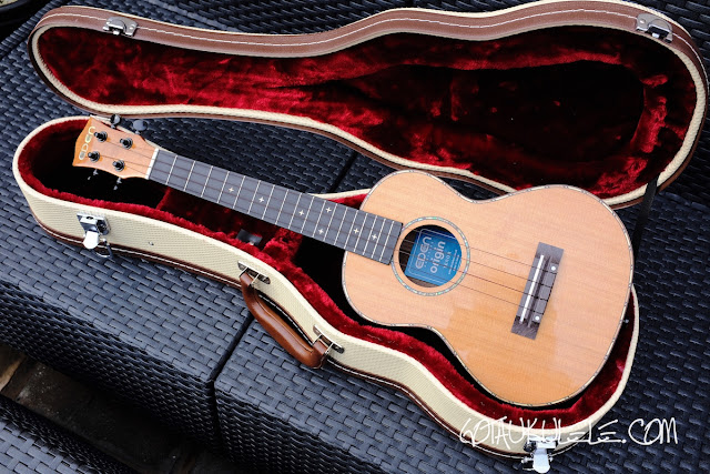 World of Ukes Eden Origin Tenor Ukulele case