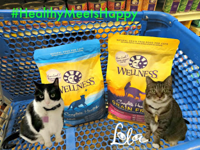 Wellness Complete Health Year of the Cat