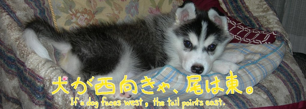 犬が西向きゃ、尾は東。  If a dog faces west, the tail points east.
