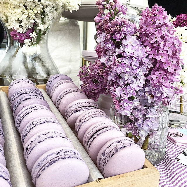 macarons and lilac | Images of inspiration in Lavender, Lilac and Mauve