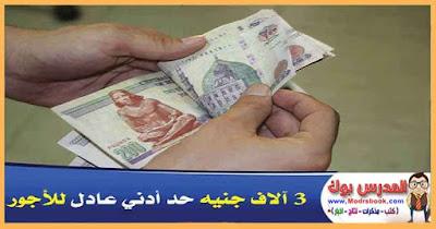 3 آلاف جنيه حد أدني عادل للأجور ، لمكافحة غلاء الأسعار