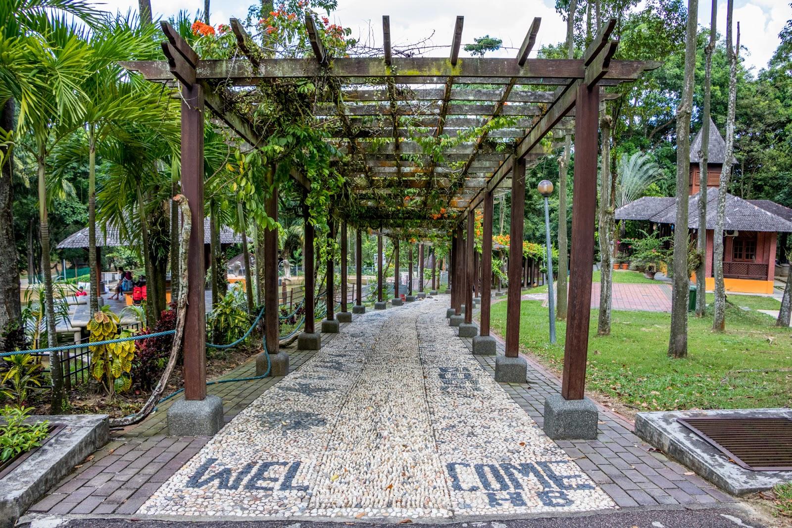 Gambar Benjamin Koe Hutan Bandar Recreational Park Johor -9368