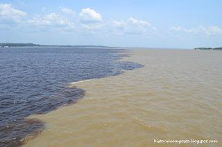 historia de manaus - encontro das aguas