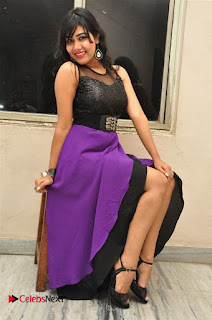 Telugu Actress Rachana Smith Stills at Money is Honey Audio Release  0054.jpg