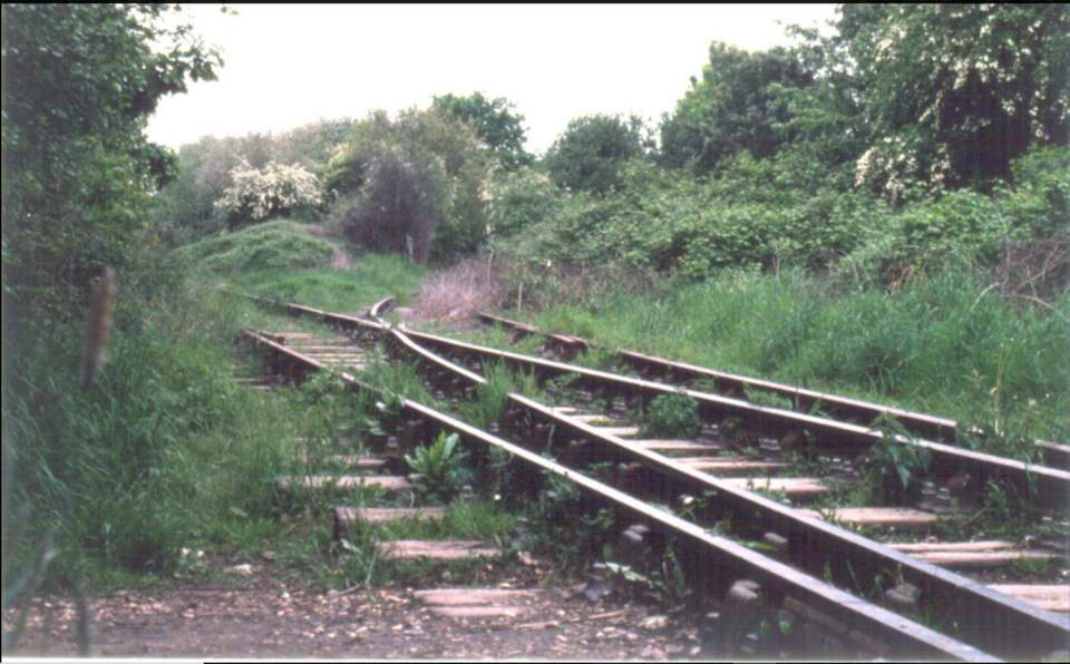 Junction at Oakdene Woods