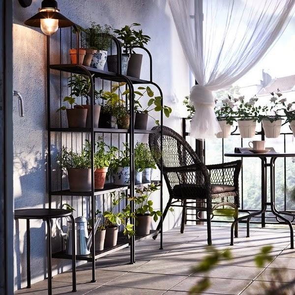 Decorar con orqu deas guia de jardin for Decorar terraza patio interior