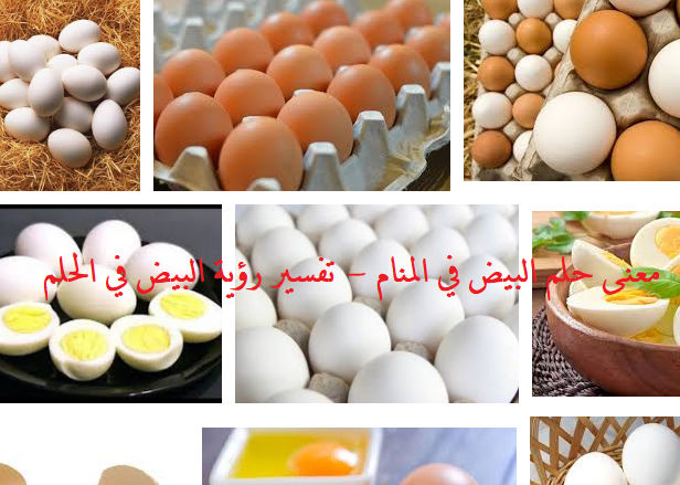 معنى حلم البيض في المنام - تفسير رؤية البيض في الحلم