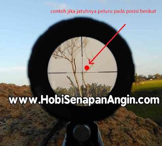 cara mudah menyetel telescope senapan angin