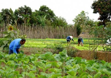 Governo do Ceará garante mais R$ 5,8 milhões para projetos da agricultura familiar