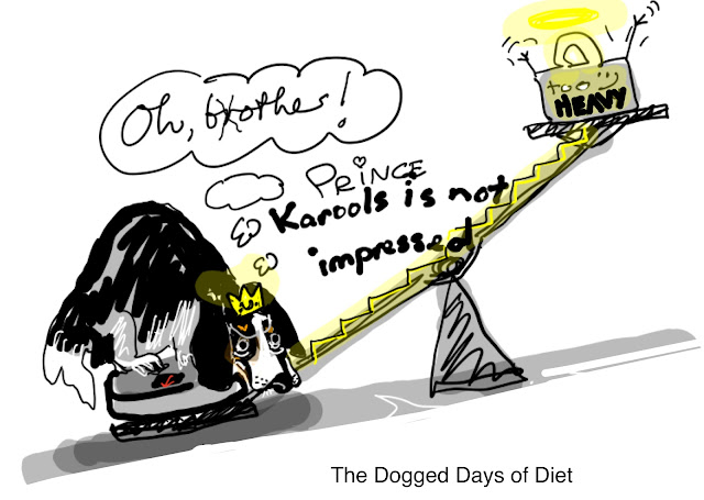 Dog on diet cartoon.