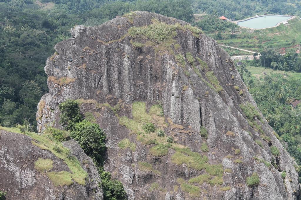 DCID 4 Gunung Pemula