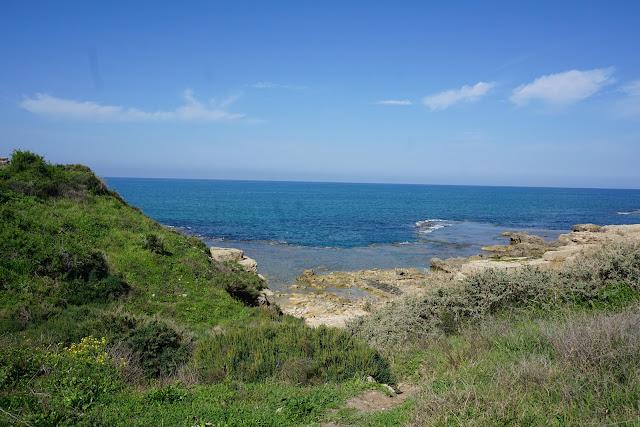 ים ושמורה יפה -תל דור