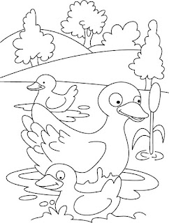 Cute Duck on River Coloring Pages
