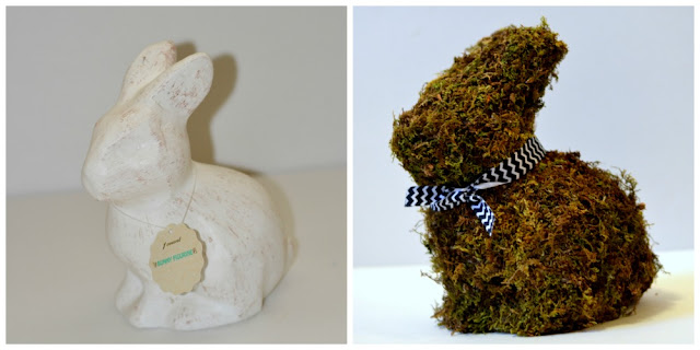 side by side before and after plain and moss covered bunny rabbit