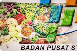 BPS Papua akan Survei Konsumsi Bapok di Sembilan Kabupaten