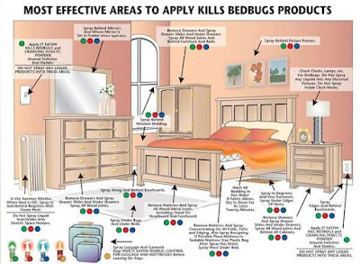 bedbugbite-org-bed-bugs-sprays-products-use