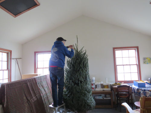 Christmas Tree being set up