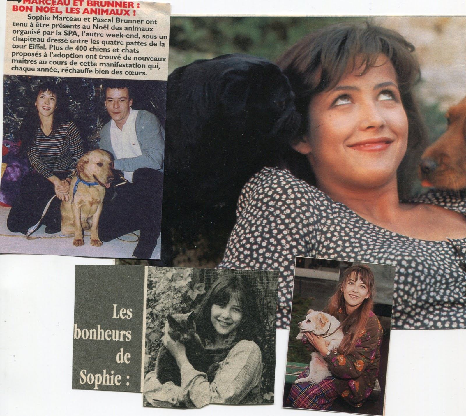 astralyne sophie marceauscorpion With la maison du tournage 15 astralyne sophie marceau scorpion