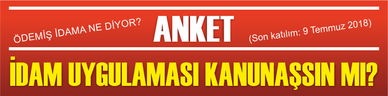 ANKETE KATIL