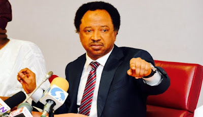I Disclosed N13.5m Monthly Running Cost For Credibility - Senator Shehu Sani