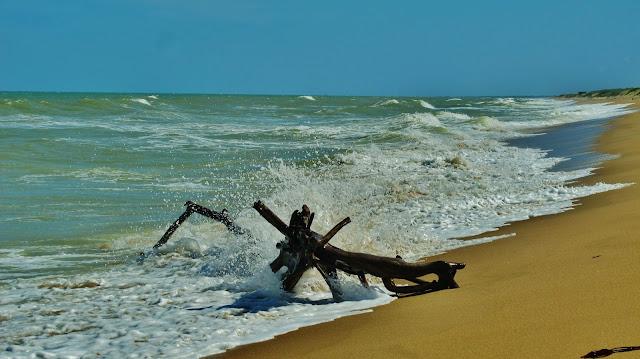Praia em Dunas de Itaúnas, no Espírito Santo.