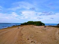 Wisata Bahari Ke Pulau Marongan Rembang
