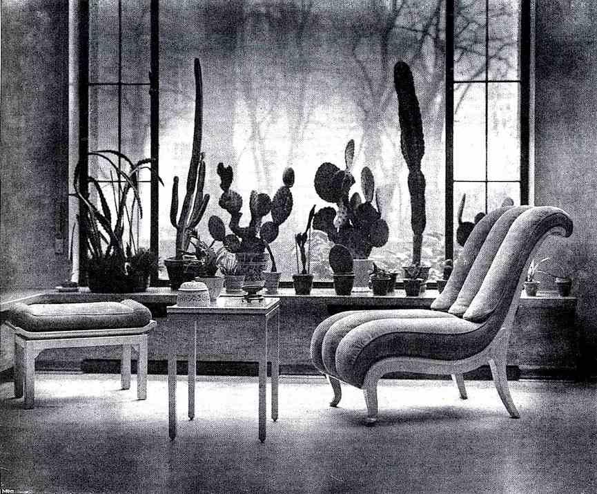 a photograph of an interior cactus garden, 1926