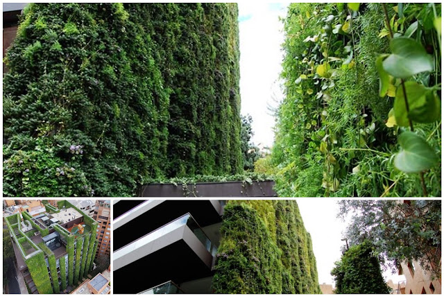 The World's Largest Vertical Garden: A Building Covered With Herbs