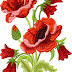 Best free Poppies machine design embroidery Design #30