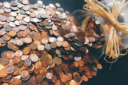 The Penny Hoarder Work from Home: Improve Your Life and New Passion Here!