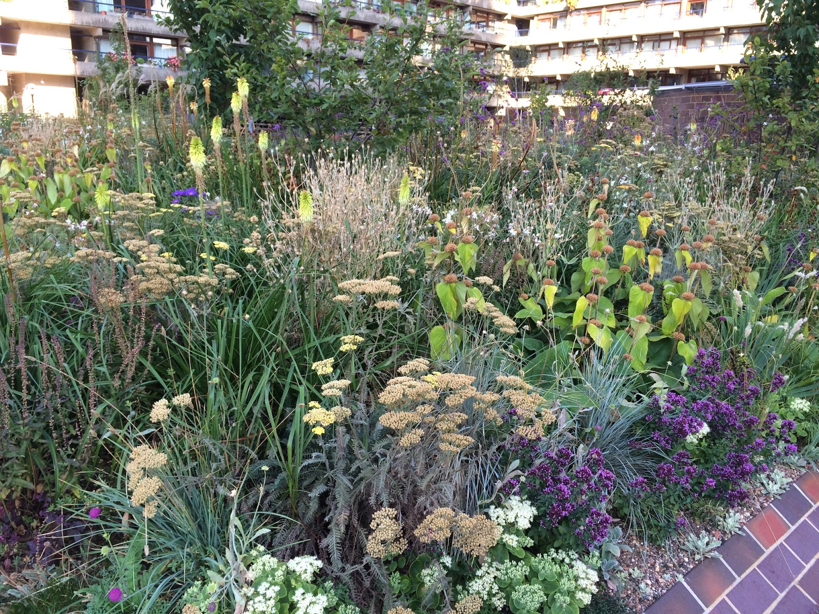 The Barbican a Nigel Dunnett planting effectively