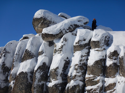 climbing serpentine