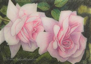 2 Roosat roosi