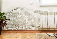 giấy dán tường chống ẩm