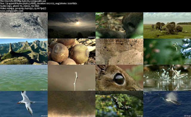 One Life DVDRip Subtitulos Español Latino 1 Link 2011