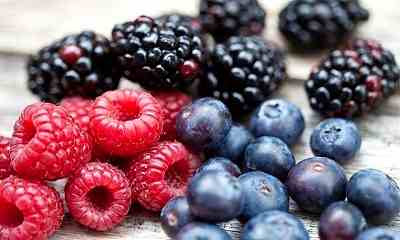 Berries of all kinds