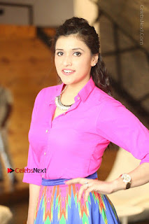 Actress Mannar Chopra in Pink Top and Blue Skirt at Rogue movie Interview  0008.JPG