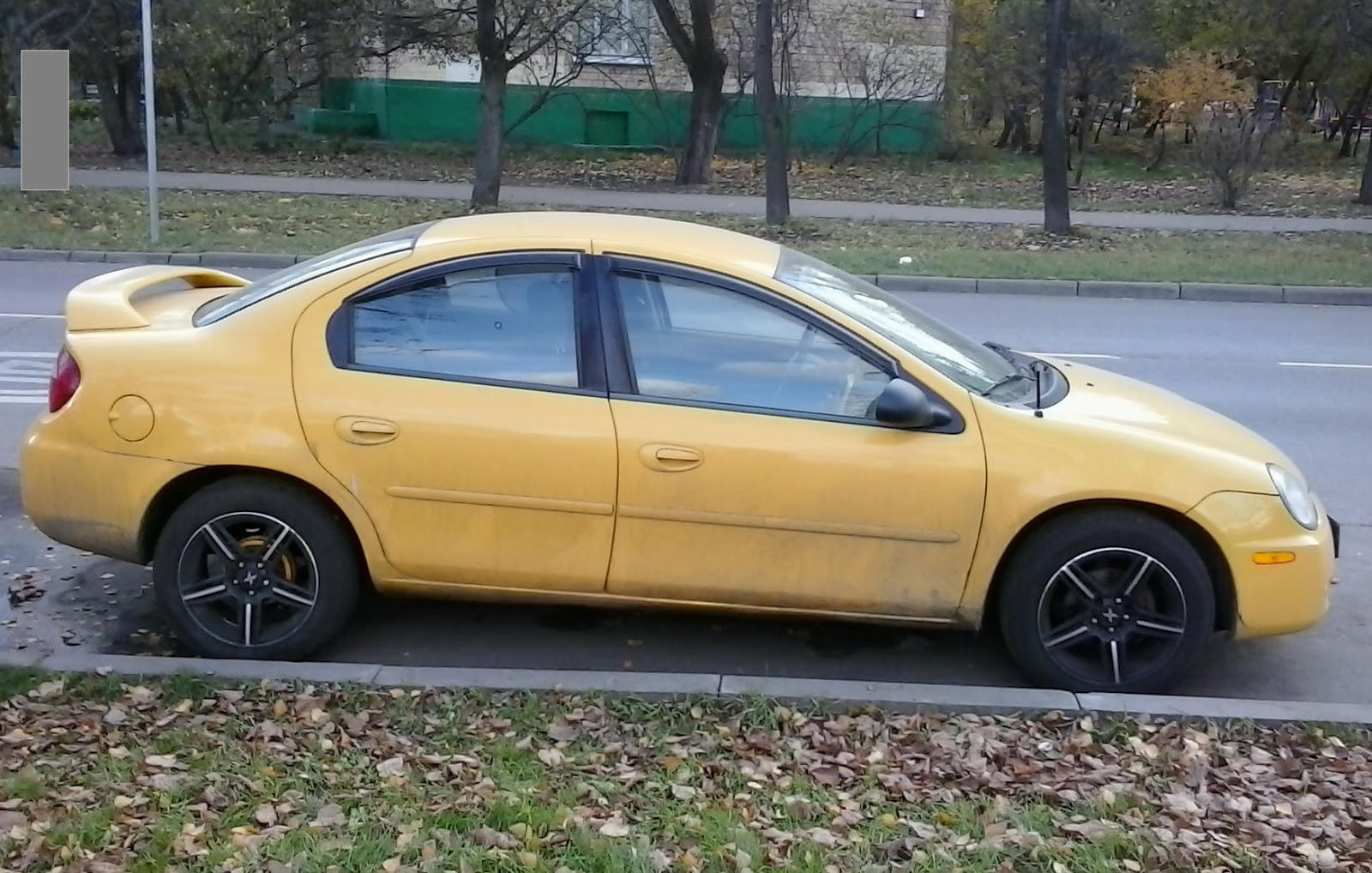 A 2003 Dodge Neon Spotted Last Autumn