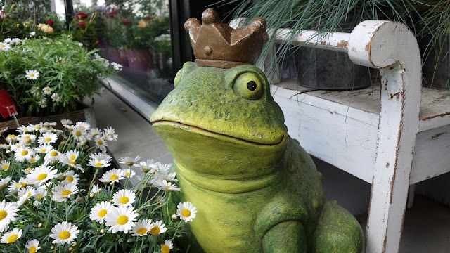 frog with a crown
