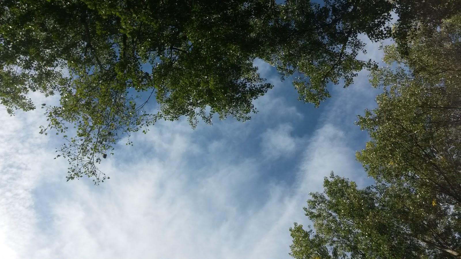 zo hoog als de hemel