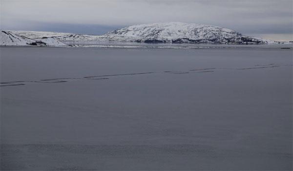 Iceland: Strange phenomenon has terrorized residents