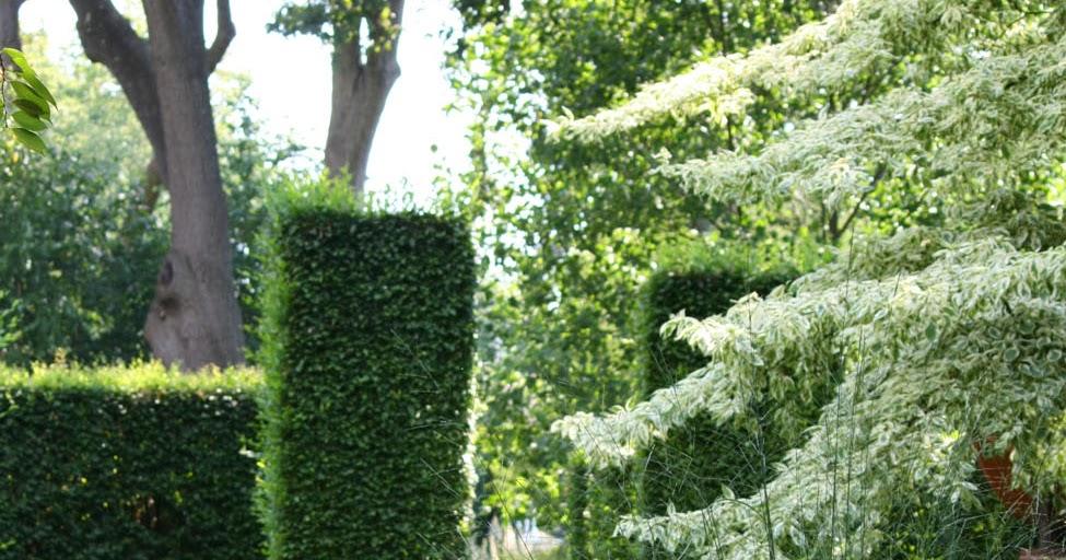 The Official Botanic Garden Of Rutgers: 66 Square Feet (Plus): Open Gardens, Nutley NJ