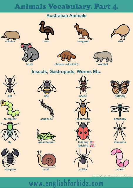 Australian animals vocabulary and insects vocabulary to learn English – printable ESL worksheets